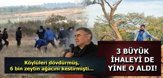 ZEYTİN KATLİAMCISINA 3 İHALE DAHA!