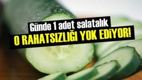 Günde 1 Adet Salatalık O Rahatsızlığı Yok Ediyor!