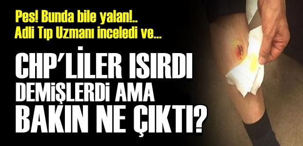 'TAM AKP'LİLERİN YAPACAĞI CİNSTEN...'
