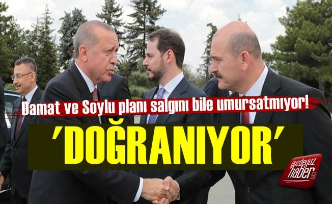 Erdoğan'ın, Damat Ve Soylu Planı!