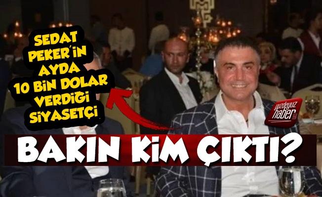 Sedat Peker'in 10 Bin Dolar Ödediği Siyasetçi Kim Çıktı?