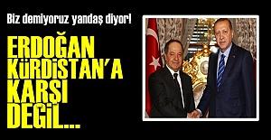 'ERDOĞAN KÜRDİSTAN'A KARŞI DEĞİL'