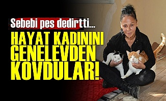 Hayat Kadınını Genelevden Kovdular!
