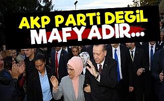 'AKP Parti Değil Mafyadır. Bunu Herkes Bilmeli'