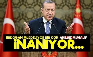 'Birçok Akılsız Muhalif Erdoğan'a İnanıyor'