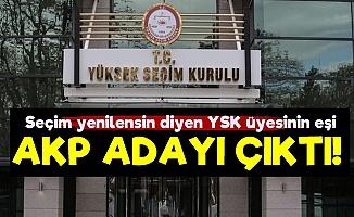 İptal İsteyen YSK Üyesinin Eşi AKP Adayı Çıktı!