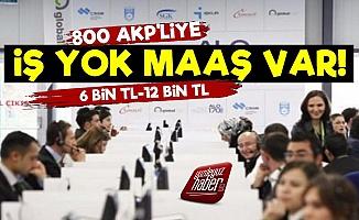 800 AKP'liye ALO 170'den Maaş Var!