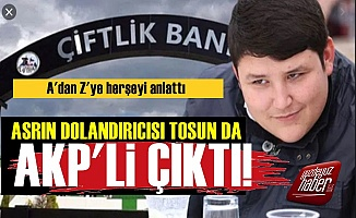 Çiftlikbank Tosun'u da AKP'li Çıktı!