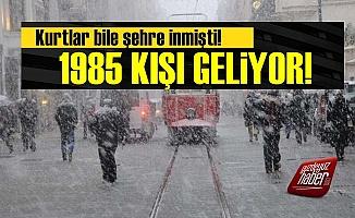 Dikkat! 1985 Kışı Yaşanacak...