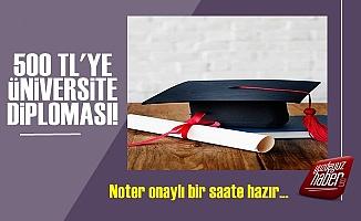 Pes! 500 TL'ye Noter Onaylı Üniversite Diploması!