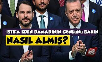Erdoğan, Damadı Berat Albayrak'ın Gönlünü Bakın Nasıl Almış?