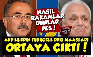 AKP'lilerin Turkcell'deki Maaşları 'Pes' Dedirtti!