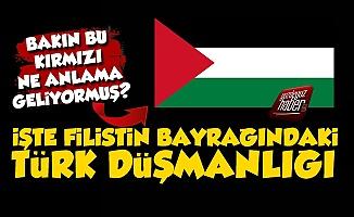 İşte Filistin Bayrağındaki Türk Düşmanlığı
