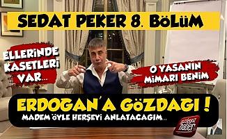 Sedat Peker 8. Bölümde Erdoğan'a Gözdağı