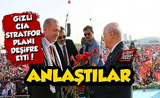'Gizli CIA' Stratfor: Erdoğan ve Bahçeli Anlaştı...