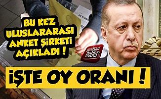 Uluslararası Anket Şirketi Erdoğan'ın Oy Oranını Açıkladı