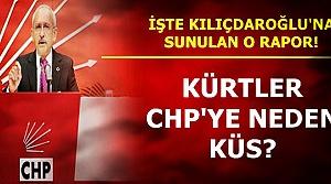 'KÜRT SEÇMEN CHP'DEN NE İSTİYOR?'