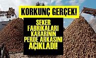 ŞEKERİN ARKASINDAKİ KORKUNÇ GERÇEK!