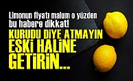 Kuru Limonu Eski Haline Getirin!