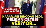 'Devleti 'PELİKAN ÇETESİ' Ele Geçirdi'