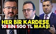 Her Kardeşe Devlet Kadrosu, 10 Bin 500 TL Maaş!