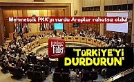 PKK'ya Saldırı Arapları Rahatsız Etti!