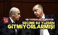 Erdoğan-Bahçeli Seçime Gitmiyor Çünkü...