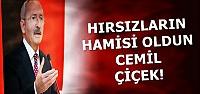 'HIRSIZLARIN HAMİSİ CEMİL ÇİÇEK'