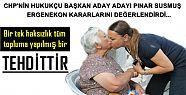 PINAR SUSMUŞ'TAN ERGENEKON DEĞERLENDİRMESİ...